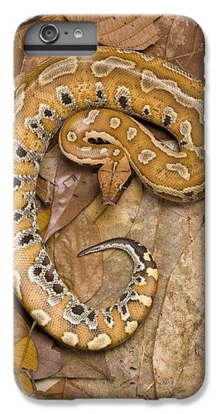 Blood Python IPhone 7 Plus Case