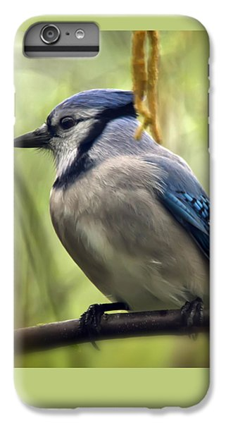 Blue Jay On A Misty Spring Day - Square Format IPhone 7 Plus Case