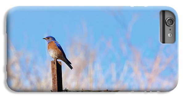 Bluebird On A Post IPhone 7 Plus Case by Mike  Dawson