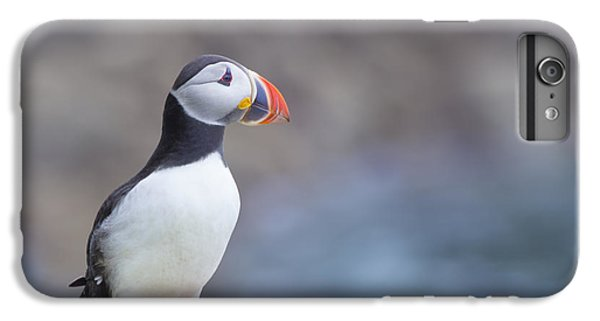 Puffin iPhone 7 Plus Case - Born Free by Evelina Kremsdorf
