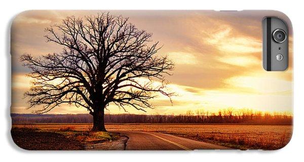 Burr Oak Silhouette IPhone 7 Plus Case by Cricket Hackmann