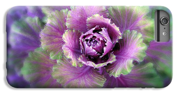 Cabbage Flower IPhone 7 Plus Case by Jessica Jenney