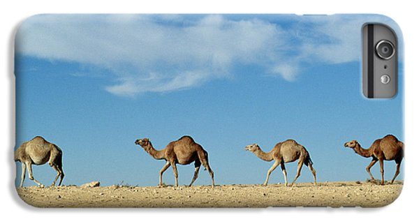 Desert iPhone 7 Plus Case - Camel Train by Anonymous