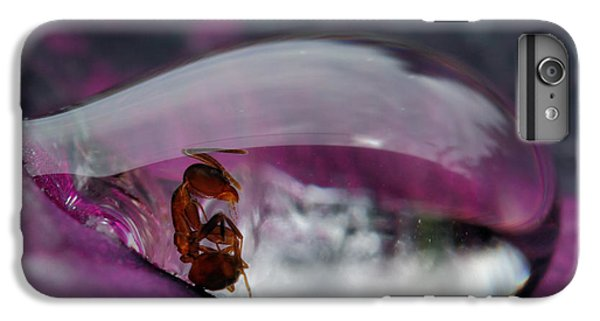 Ant iPhone 7 Plus Case - Caught In A Droplet by Jimmy Hoffman