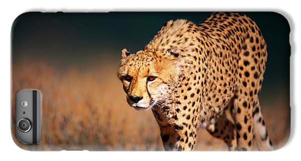 Cheetah iPhone 7 Plus Case - Cheetah Approaching From The Front by Johan Swanepoel