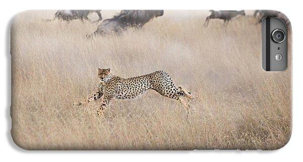Cheetah iPhone 7 Plus Case - Cheetah Hunting by Jun Zuo