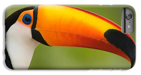 Toucan iPhone 7 Plus Case - Close-up Of A Toco Toucan Ramphastos by Panoramic Images