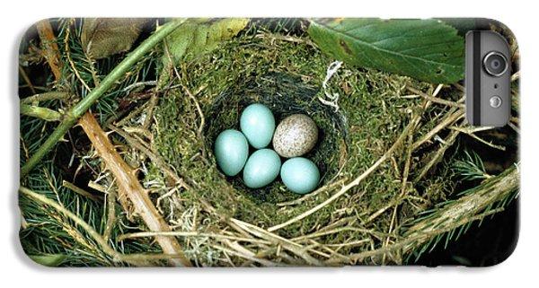 Common Cuckoo Cuculus Canorus Egg Laid IPhone 7 Plus Case