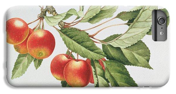 Crab Apples IPhone 7 Plus Case by Sally Crosthwaite