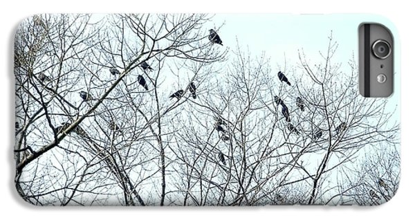 Crow Trees IPhone 7 Plus Case