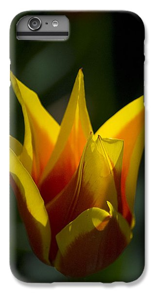 Crown Tulip IPhone 7 Plus Case by Yulia Kazansky