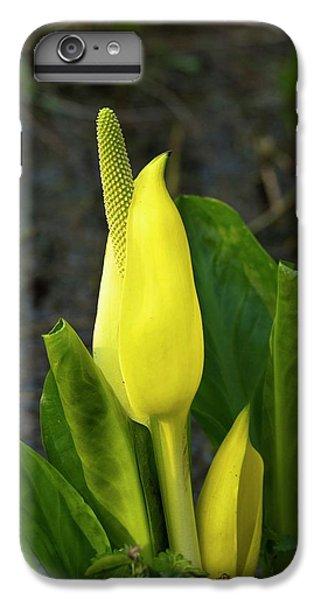 Cuckoo Pint (arum Maculatum) IPhone 7 Plus Case