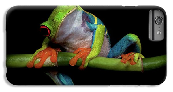 Frogs iPhone 7 Plus Case - Curiosity by Ferdinando Valverde