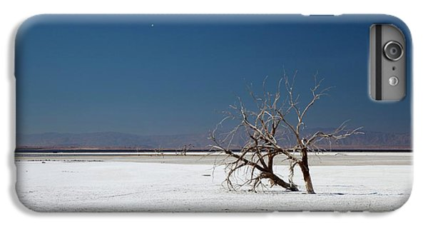 Dead Trees On Salt Flat IPhone 7 Plus Case