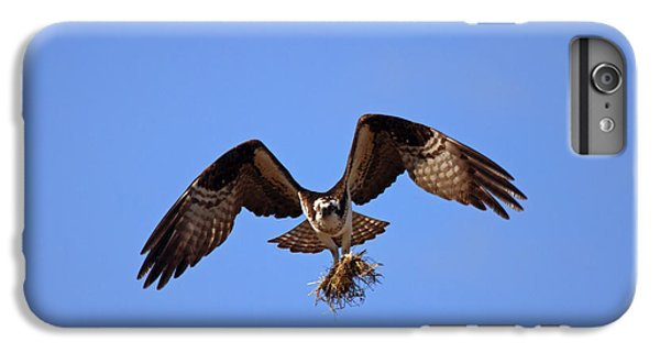 Osprey iPhone 7 Plus Case - Delivery By Air by Mike  Dawson