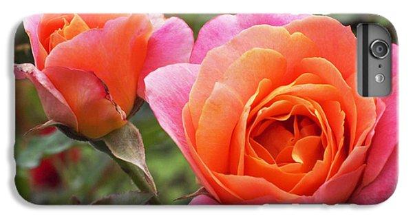 Disneyland Roses IPhone 7 Plus Case