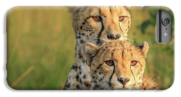 Cheetah iPhone 7 Plus Case - Double Team by Jaco Marx