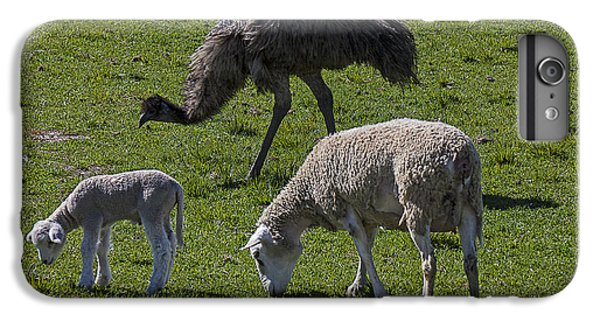 Emu iPhone 7 Plus Case - Emu And Sheep by Garry Gay