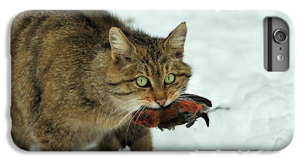 Crossbill iPhone 7 Plus Case - European Wildcat by Reiner Bernhardt