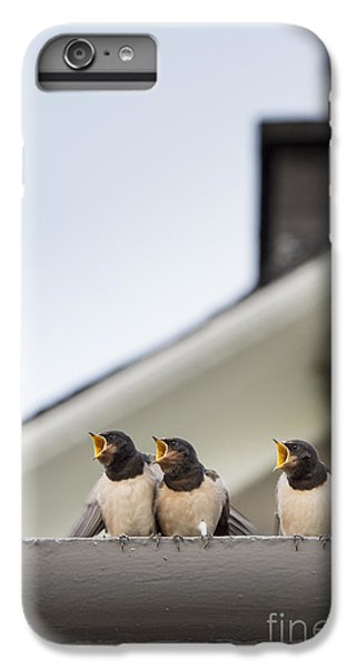 Swallow iPhone 7 Plus Case - Feed Me  by Tim Gainey