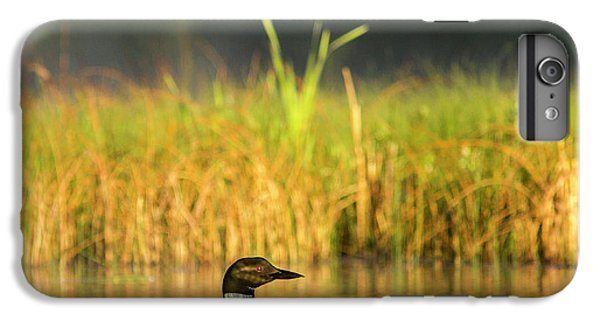 Female Common Loon With Newborn Chick IPhone 7 Plus Case