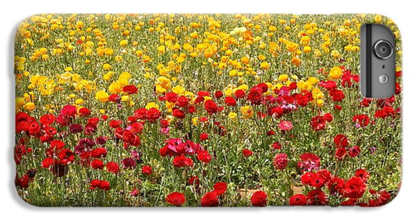 IPhone 7 Plus Case featuring the photograph Flower Rainbow by Nathan Rupert