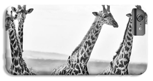 Four Giraffes IPhone 7 Plus Case by Adam Romanowicz