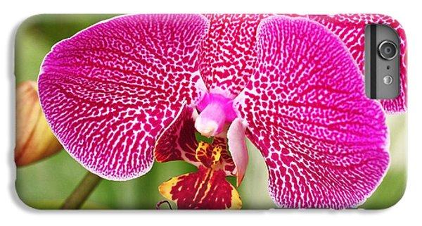 Fuchsia Moth Orchid IPhone 7 Plus Case