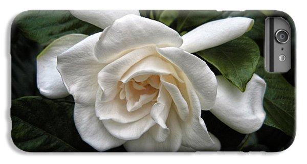Gardenia IPhone 7 Plus Case