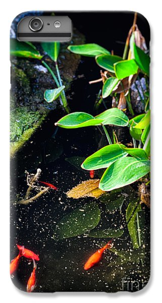 IPhone 7 Plus Case featuring the photograph Goldfish In Pond by Silvia Ganora