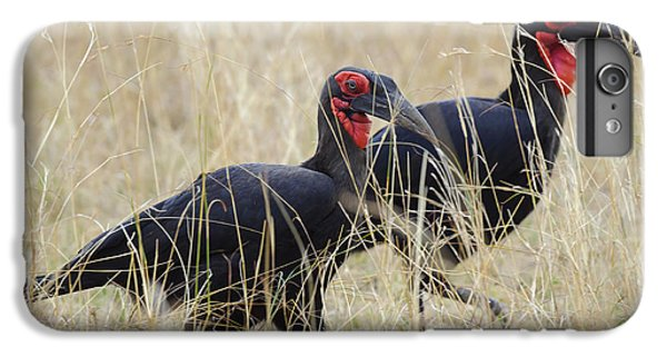 Ground Hornbills IPhone 7 Plus Case by John Shaw