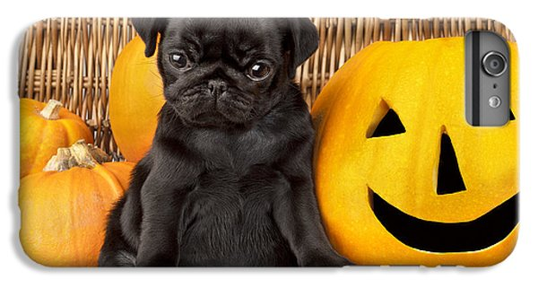 Pug iPhone 7 Plus Case - Halloween Pug by MGL Meiklejohn Graphics Licensing