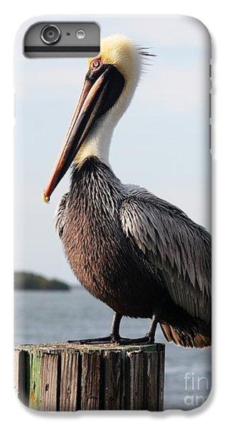 Handsome Brown Pelican IPhone 7 Plus Case by Carol Groenen