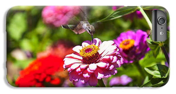 Garden iPhone 7 Plus Case - Hummingbird Flight by Garry Gay