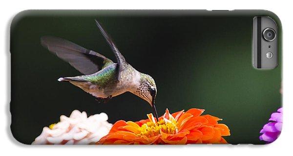 Hummingbird In Flight With Orange Zinnia Flower IPhone 7 Plus Case by Christina Rollo