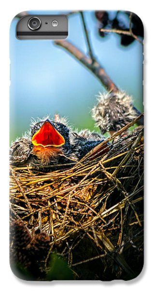 Swallow iPhone 7 Plus Case - Hungry Tree Swallow Fledgling In Nest by Bob Orsillo