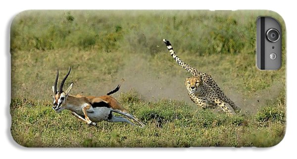 Cheetah iPhone 7 Plus Case - Hunting by Giuseppe D\\\'amico