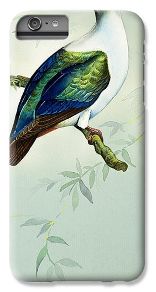 Imperial Fruit Pigeon IPhone 7 Plus Case by Bert Illoss