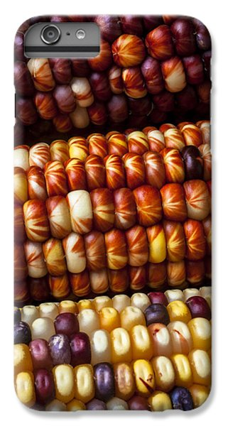 Indian Corn Harvest Time IPhone 7 Plus Case by Garry Gay