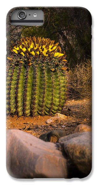 IPhone 7 Plus Case featuring the photograph Into The Prickly Barrel by Mark Myhaver