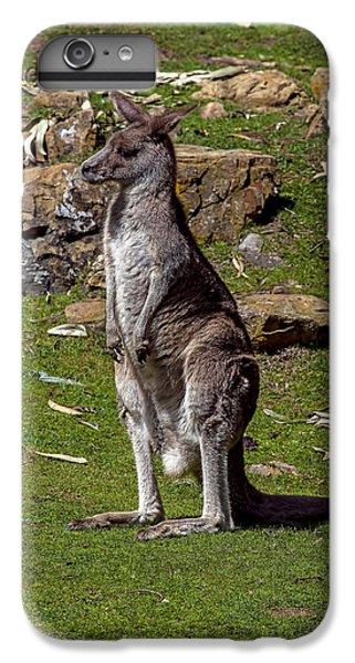 Kangaroo iPhone 7 Plus Case - Kangaroo by Garry Gay