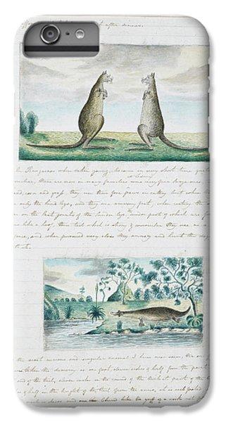 Kangaroo iPhone 7 Plus Case - Kangaroos And Platypus by British Library