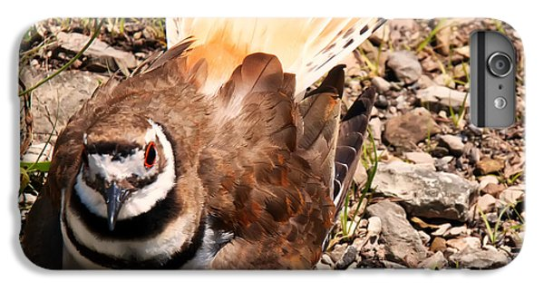 Killdeer iPhone 7 Plus Case - Killdeer On Its Nest by Chris Flees