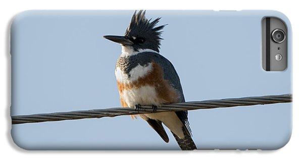 Kingfisher Profile IPhone 7 Plus Case