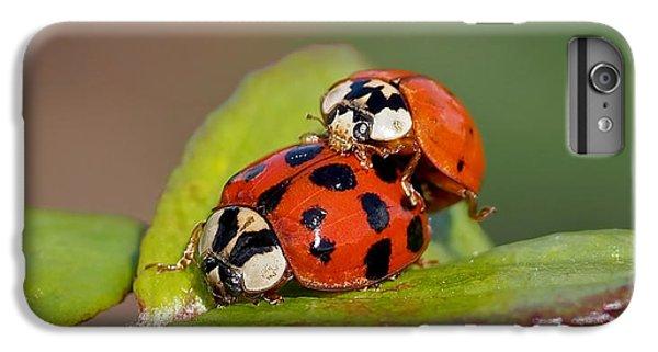 Ladybird Coupling IPhone 7 Plus Case
