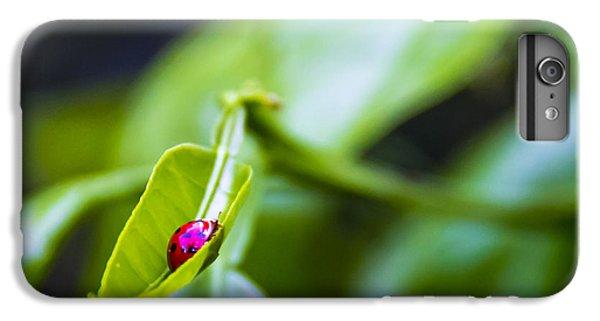 Ladybug iPhone 7 Plus Case - Ladybug Cup by Marvin Spates
