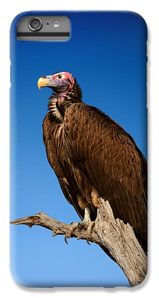 Lappetfaced Vulture Against Blue Sky IPhone 7 Plus Case by Johan Swanepoel
