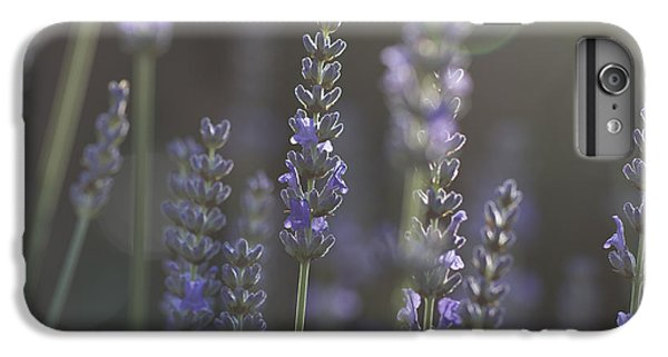 IPhone 7 Plus Case featuring the photograph Lavender Flare. by Clare Bambers