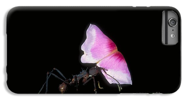 Leafcutter Ant IPhone 7 Plus Case by Gregory G. Dimijian