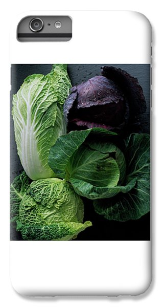 Lettuce IPhone 7 Plus Case
